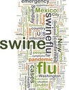 Swine flu wordcloud Royalty Free Stock Images