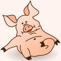 Swine Oink Royalty Free Stock Photo
