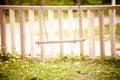 Swing in backyard Royalty Free Stock Photo