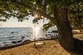 Swing on a beautiful beach at sunset. Koh Chang Royalty Free Stock Photo