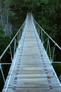 Swing Bridge Stock Photography