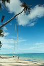 Swing hang from coconut tree over beach,Samui island Royalty Free Stock Photos