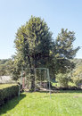 Swing with some trees on a sunny day in france it is a vertical image Royalty Free Stock Photos