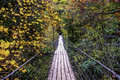 Swinging bridge a walk through fall creek falls state park pikeville tennessee united states Stock Images