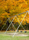 Swings in the fall empty swingset near a tree Royalty Free Stock Photos