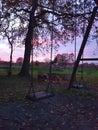 Swings & Sunsets