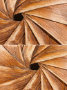 Swirls of thin timber leaves Stock Image