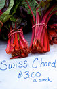 Swiss Chard Royalty Free Stock Images