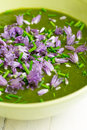 Swiss Chard and Potato Cream Soup Chopped Chives with Flowers Royalty Free Stock Photo