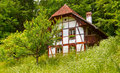 Swiss houses garden against summer Stock Photography
