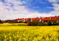 Swiss landscape at springtime Royalty Free Stock Photography