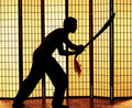 Swordsman silhouette Royalty Free Stock Photo