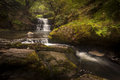Sychryd cascades sgydau or the is a set of waterfalls near pontneddfechan south wales Stock Photography