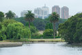SYDNEY, AUSTRALIA - NOVEMBER 24, 2014: Sydney Centennial Park and Cityscape in Background Royalty Free Stock Photo