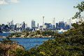Sydney harbor and downtown buildings in australia Royalty Free Stock Image