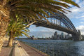 Sydney harbour bridge walking on the path that leads beneath the beneath the palm trees cityscape and opera house in background Royalty Free Stock Image