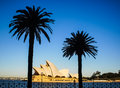 Sydney opera house with palm tree and blue sky Stock Photo