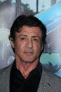 Sylvester Stallone Royalty Free Stock Photo