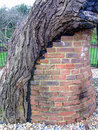 Symbiosis support old tree with brick column Royalty Free Stock Photo