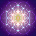 Symbol of Sacred Geometry Royalty Free Stock Photo