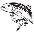 Symbol Salmon