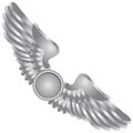 Symbolic wings in the emblem vector illustration Royalty Free Stock Images