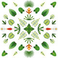 Symmetric geometric tropical flowers and leaves white background