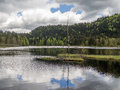 Symmetry reflections in a small lake and is this with dead tree the center Stock Photos