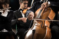 Symphony orchestra cello player close up performing with hand Stock Image