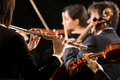 Symphony orchestra performance flutist close up professional female in concert with players on background Stock Image