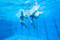 Synchronized team swimming girls underwater action at national championships kings park durban south africa Royalty Free Stock Image