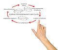 System development life cycle Royalty Free Stock Photo