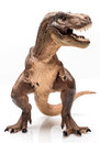 T rex figurine on white background Royalty Free Stock Images