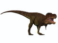 T rex titan tyrannosaurus lived in north america in the cretaceous period and was an intimidating predator Stock Image