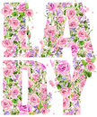 T-shirt graphics. Lady. Rose flower watercolor