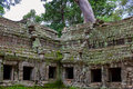 Ta Prohm, Angkor Wat Royalty Free Stock Photo