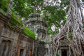 Ta Prohm in Angkor Wat Stockbild