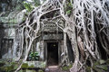 Ta prohm cambodia the exterior wall of framed by the roots of trees Stock Image