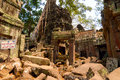 Ta prohm destruction roots of a strangler fig tree contributing to the slow of temple at angkor wat cambodia Stock Photography