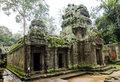 Ta prohm temple ancient or rajavihara structure at angkor siem reap cambodia Royalty Free Stock Photo