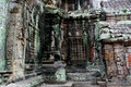 Ta Prohm Temple, Angkor, Cambodia Royalty Free Stock Image