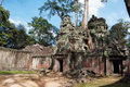 Ta prohm temple angkor cambodia siem reap Stock Photography