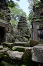 Ta prohm temple in angkor wat complex siem reap cambodia Royalty Free Stock Photo