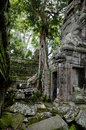 Ta prohm temple in angkor wat complex siem reap cambodia Stock Photo