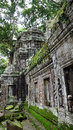 Ta prohm temple in angkor wat complex siem reap cambodia Stock Images