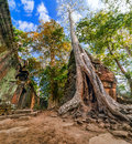 Ta prohm temple at angkor wat complex siem reap cambodia ancient khmer architecture with giant banyan tree two images panorama Royalty Free Stock Photography