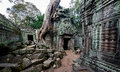 Ta prohm temple in angkor wat stitched panorama of a tree has grown the ancient of cambodia Royalty Free Stock Image