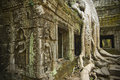 Ta prohm temple cambodia ruins with silk cotton tree roots Stock Photography