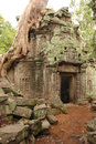Ta prohm temple with giant tree root angkor wat cambodia Royalty Free Stock Photos