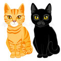 Tabby and black cats cute on orange color with orange yellow eyes Stock Photography
